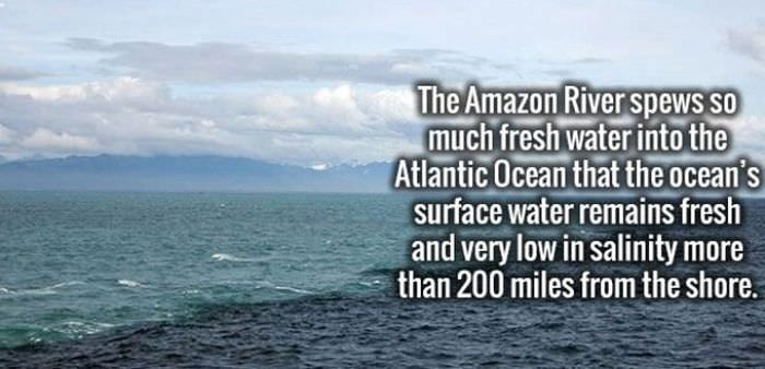 20 Interesting Facts that May Surprise You