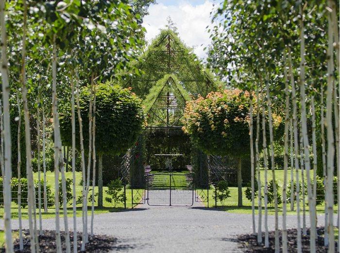 iglesia arbol