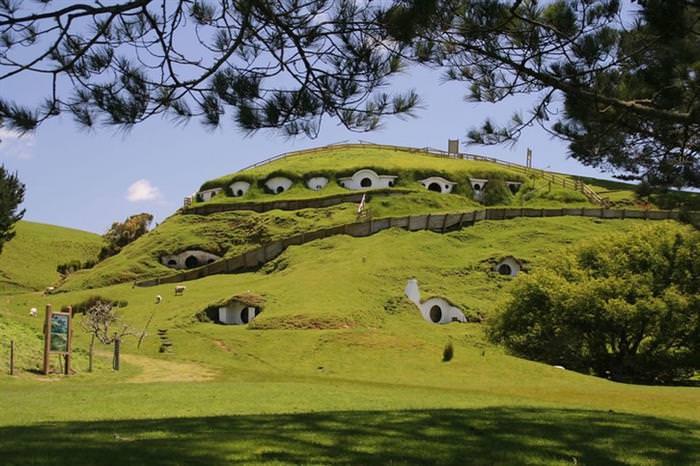 Grass Roofs