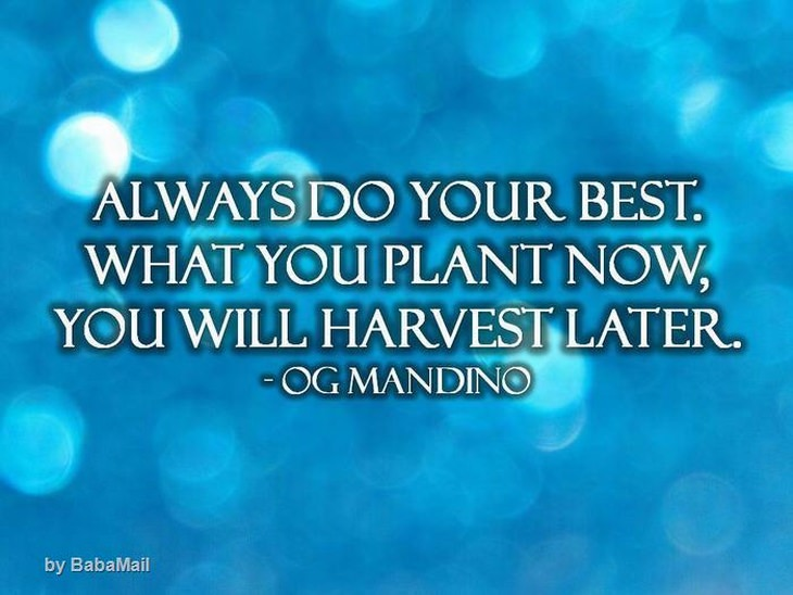 Og Mandino - Always do your best. What you plant now, you will harvest later.