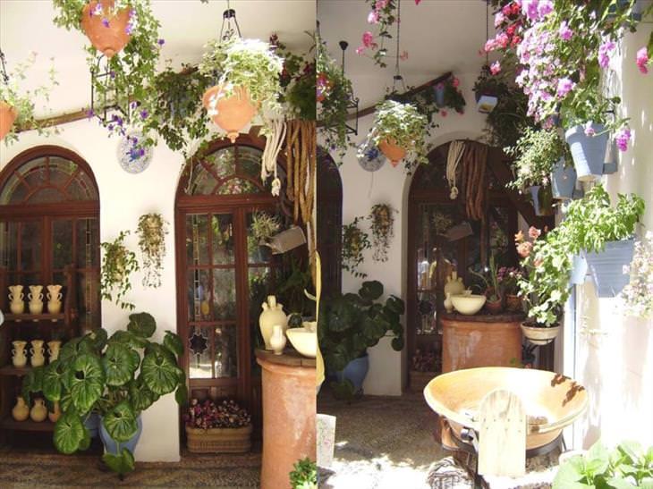 Cordoba, flowers, city