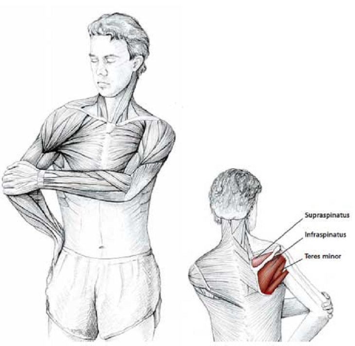 Easy Stretches - Release - Tension - Neck - Shoulders