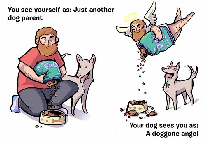 how dogs see people