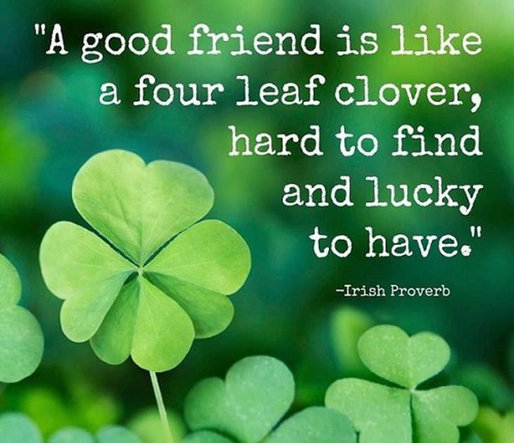 Beautiful Friendship Quotes Beautiful Friendship Quotes | Spirituality   BabaMail Beautiful Friendship Quotes