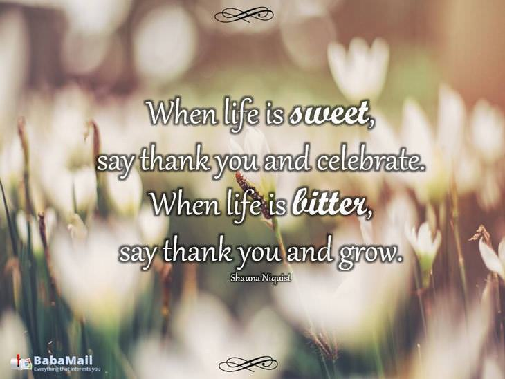 beautiful quotes: When life is sweet, say thank you and celebrate. When life is bitter, say thank you and grow. - Shauna Niquist