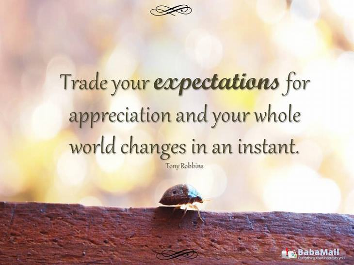 Trade you expectations for appreciation and your whole world changes in an instant. - Tony Robbins