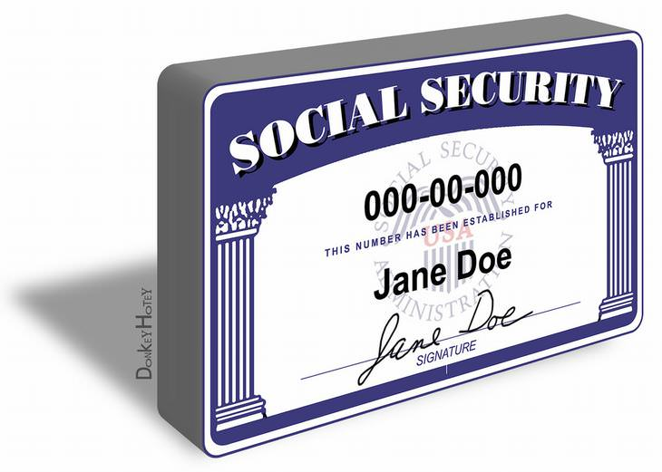 SSN, fraud, security
