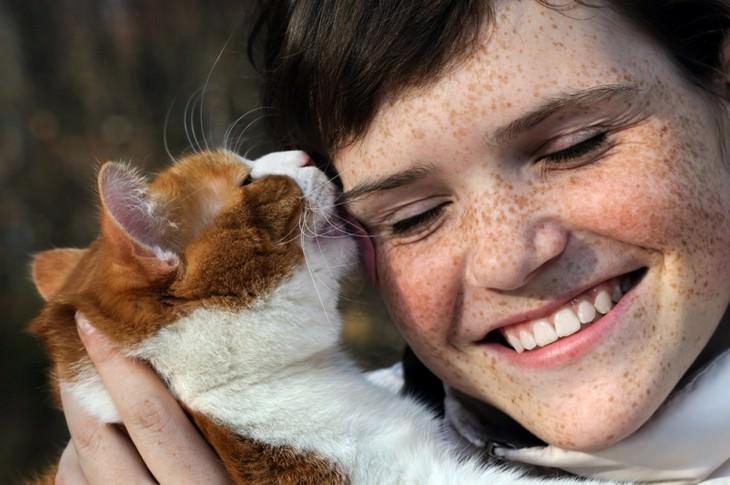 pets, cats, cute, love