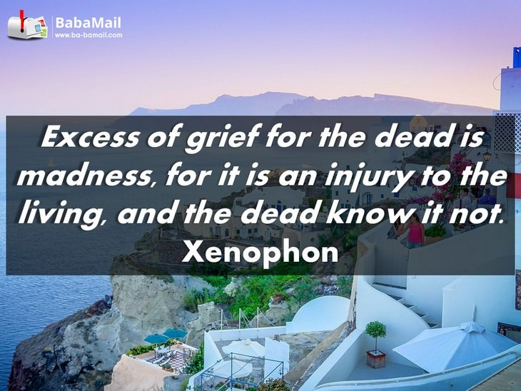 Xenophon - Excess of grief for the dead is madness, for it is an injury to the living, and the dead know it not.