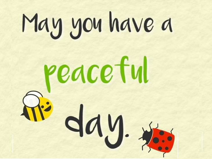 I Hope You Have a Peaceful Day...