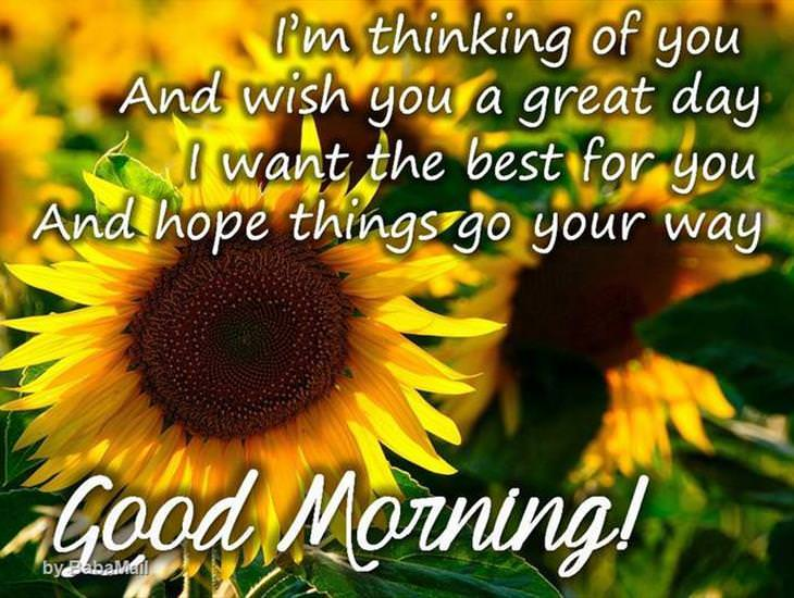 Have a Good Morning!