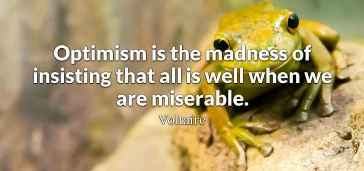 Voltaire - Optimism is the madness of insisting that all is well when we are miserable.
