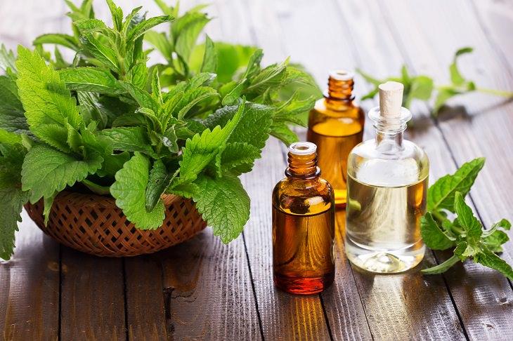 Essential Oils - Brain - Health
