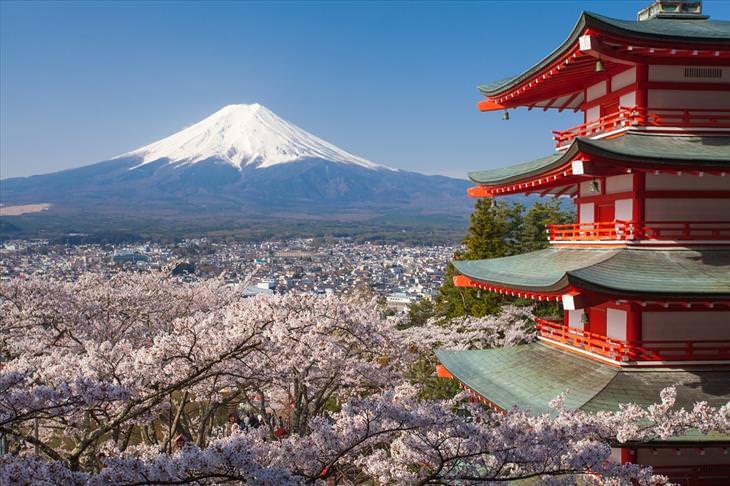 photo of the day, sakura, mount fuji, pagoda