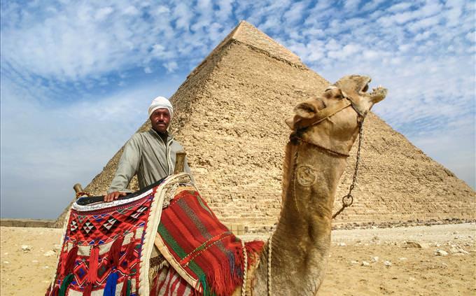 Great Pyramid of Giza and camel