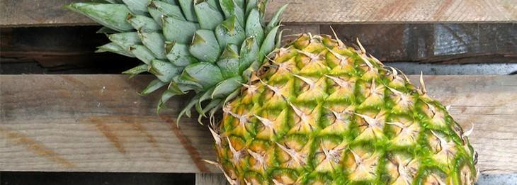 pineapple on wood bench