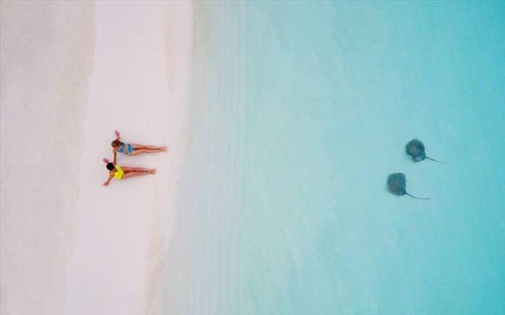 dronestagram-best-pictures-2017