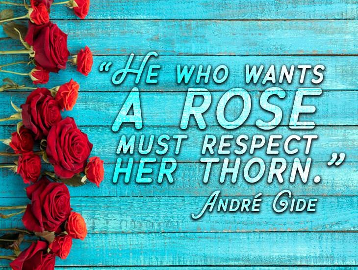 Respect The Thorn