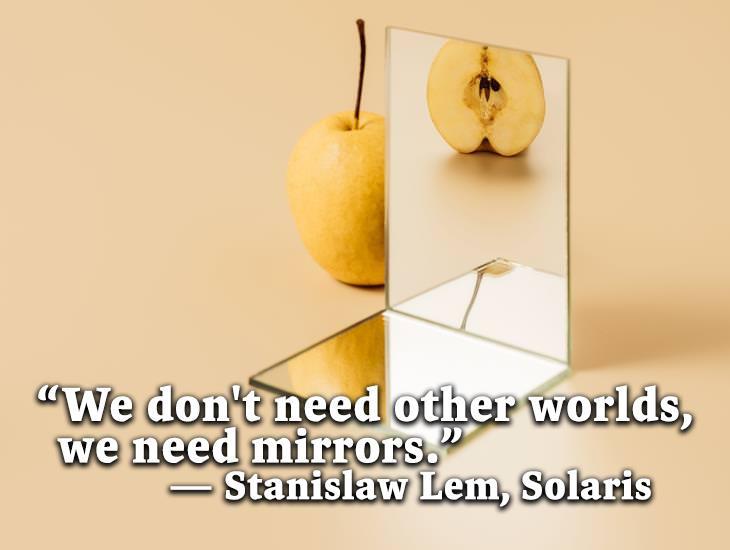 We Need Mirrors