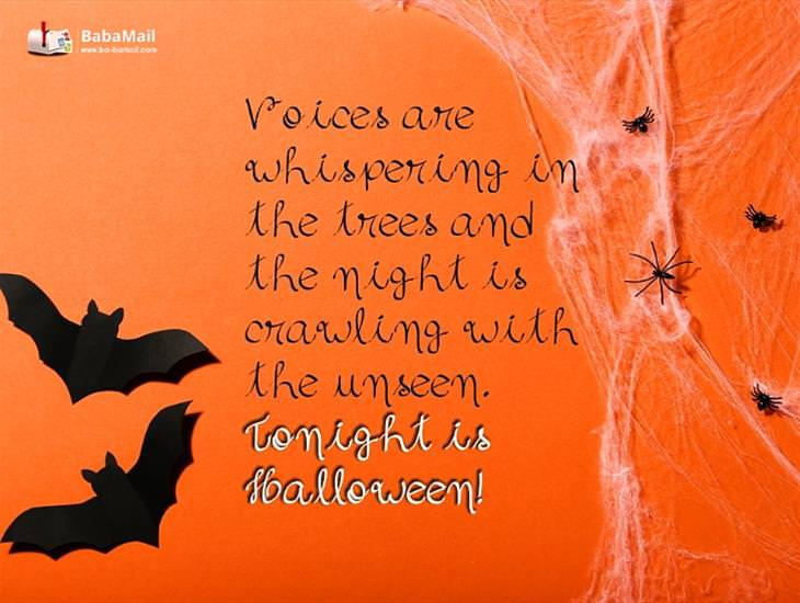 The Night is Crawling with the Unseen This Halloween!