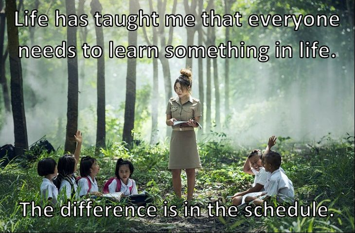 Life has taught me that everyone needs to learn something in life. The difference is in the schedule.