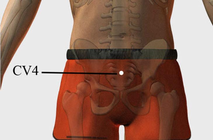 pressure points CV4 vertebrae