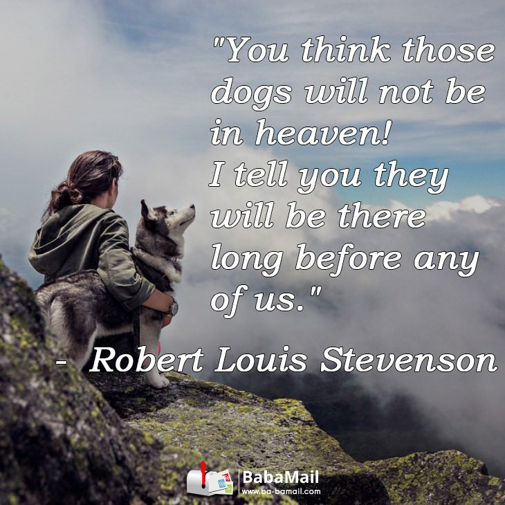 animal-quotes