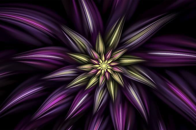 Abstract drawing of a flower