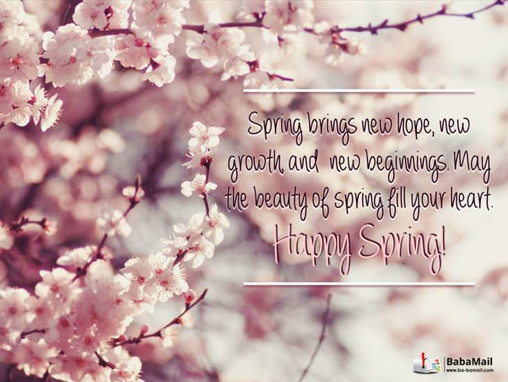 May the Beauty of Spring Fill Your Heart!