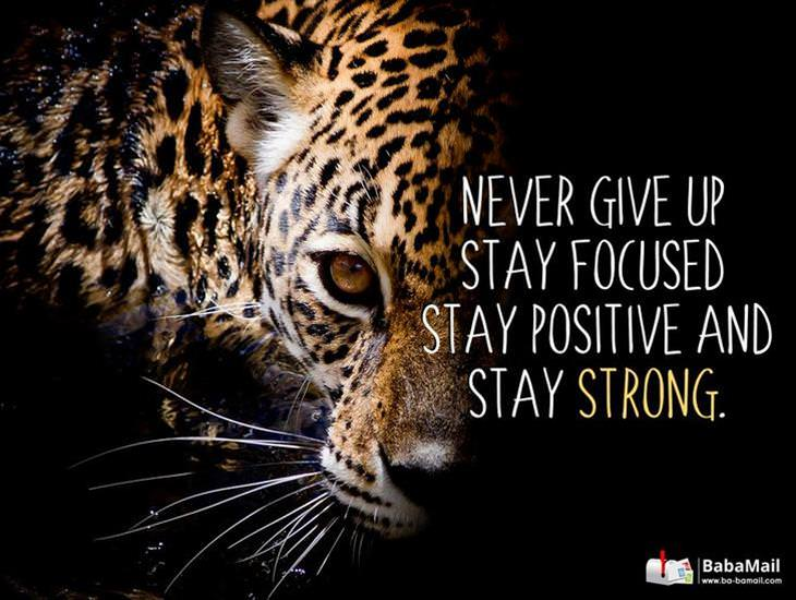 Stay Focused, Stay Positive, Stay Strong