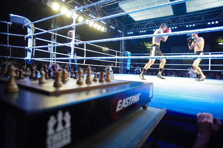 unusual sports - Chess Boxing