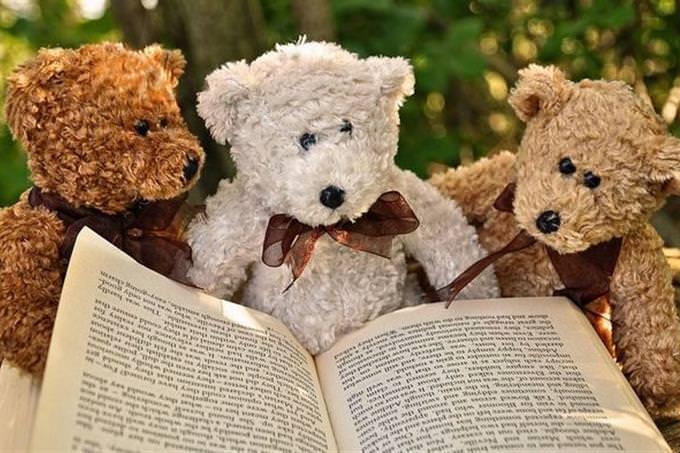 3 teddy bears sitting by an open book