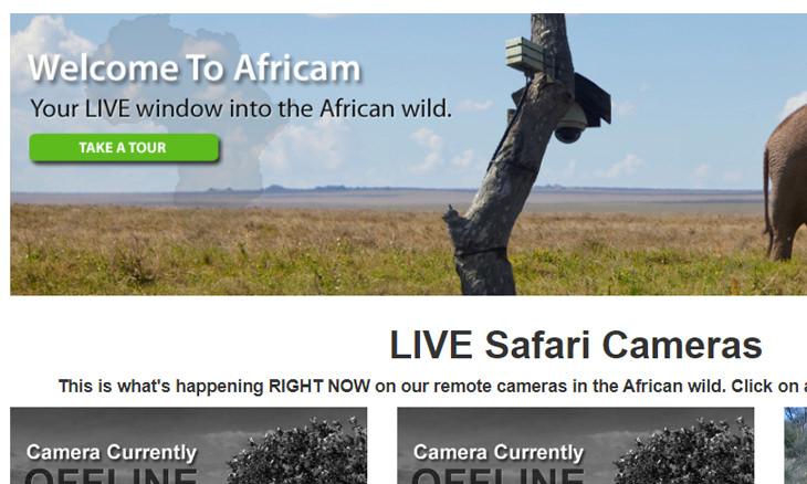 streaming-webcams