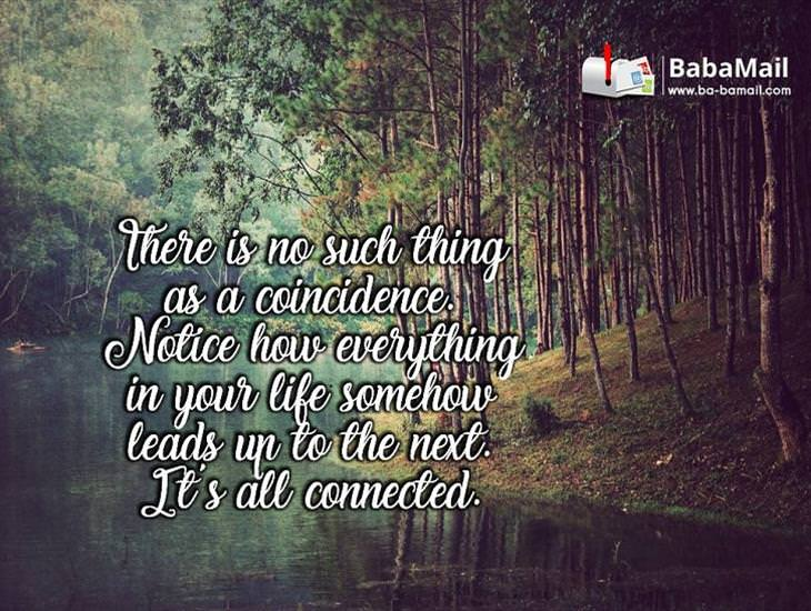 Everything In Your Life Is Connected...