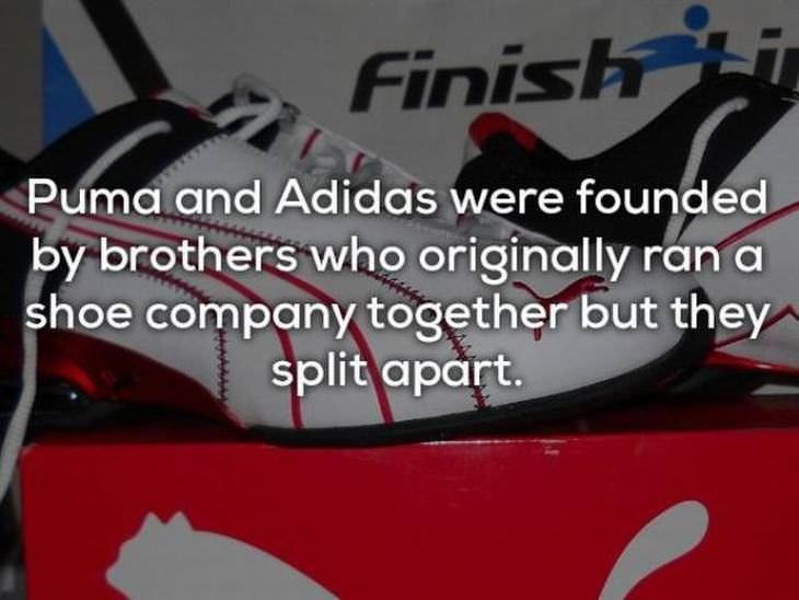 facts-about-companies