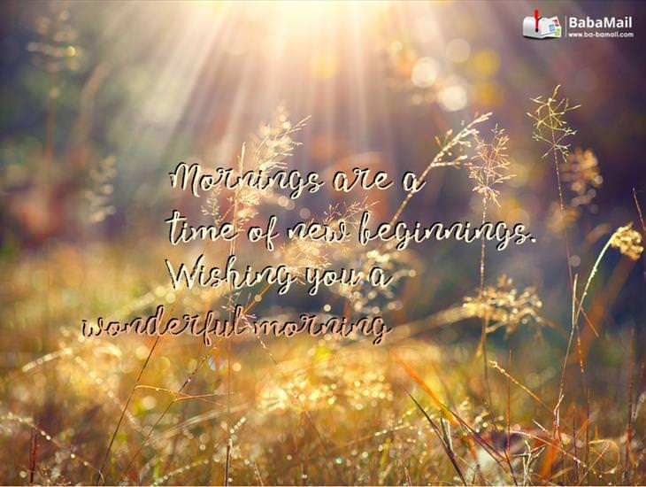 Wishing You a Wonderful Morning!
