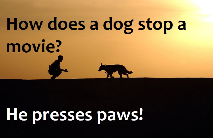 How does a dog stop a movie? He presses paws. family one liners