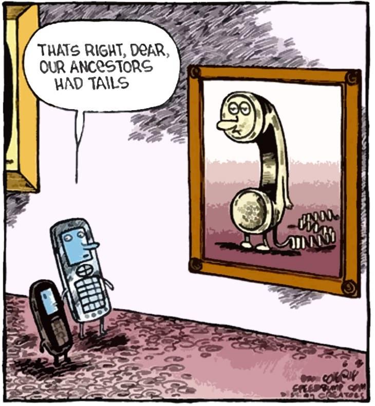 Funny Senior cartoons