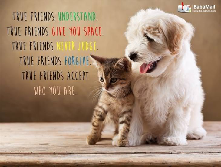 True Friends Do These Five Main Things