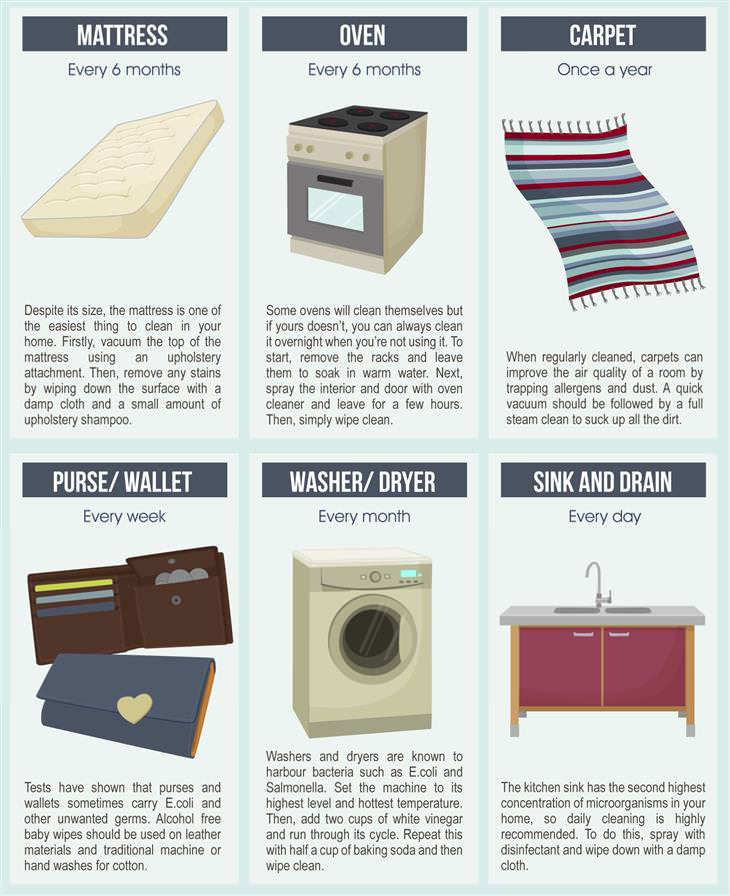 Cleaning Infograph