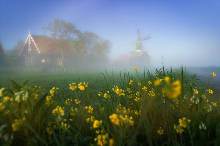 Windmill and Fog Photography