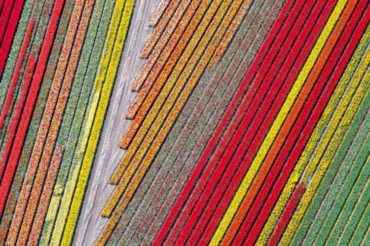Fantastic Drone Photographs