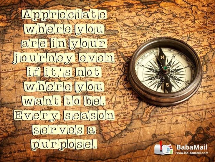 Appreciate Where You Are In Your Journey