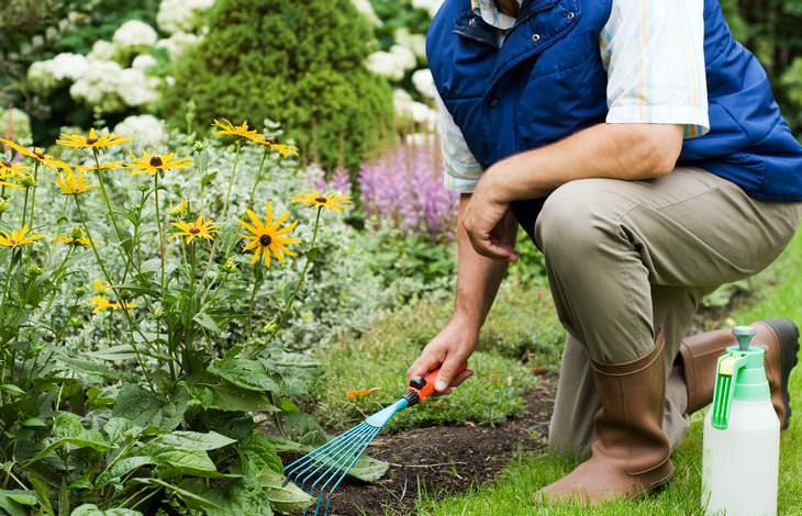 how healthy is your garden?