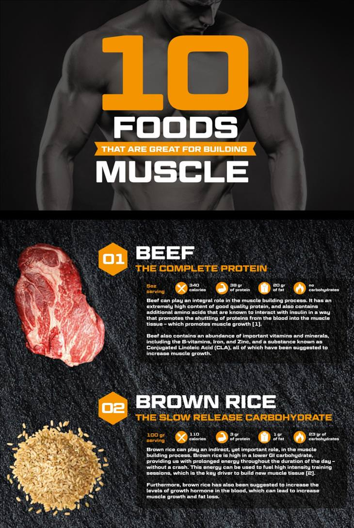 Muscle Infographic