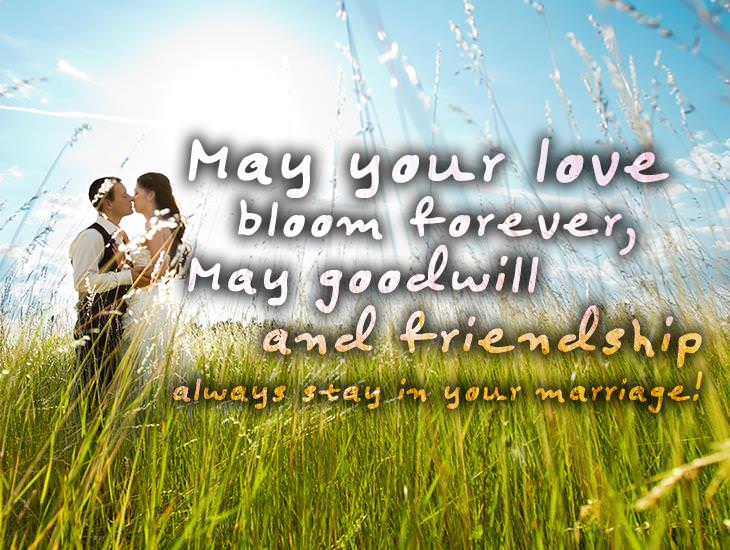 May Goodwill and Friendship Always Stay In Your Marriage!