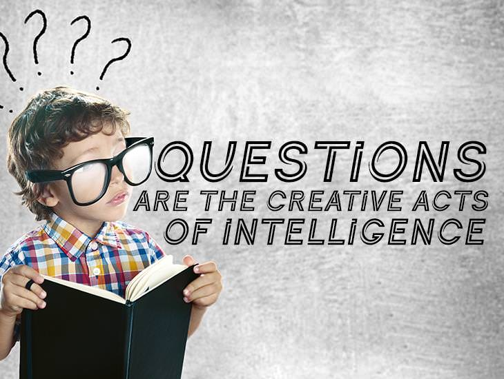 Questions Are Creative Acts Of Intelligence