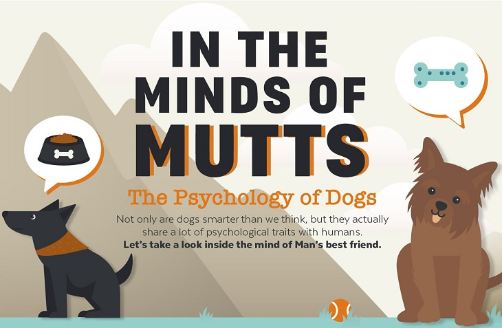 in the minds of mutts