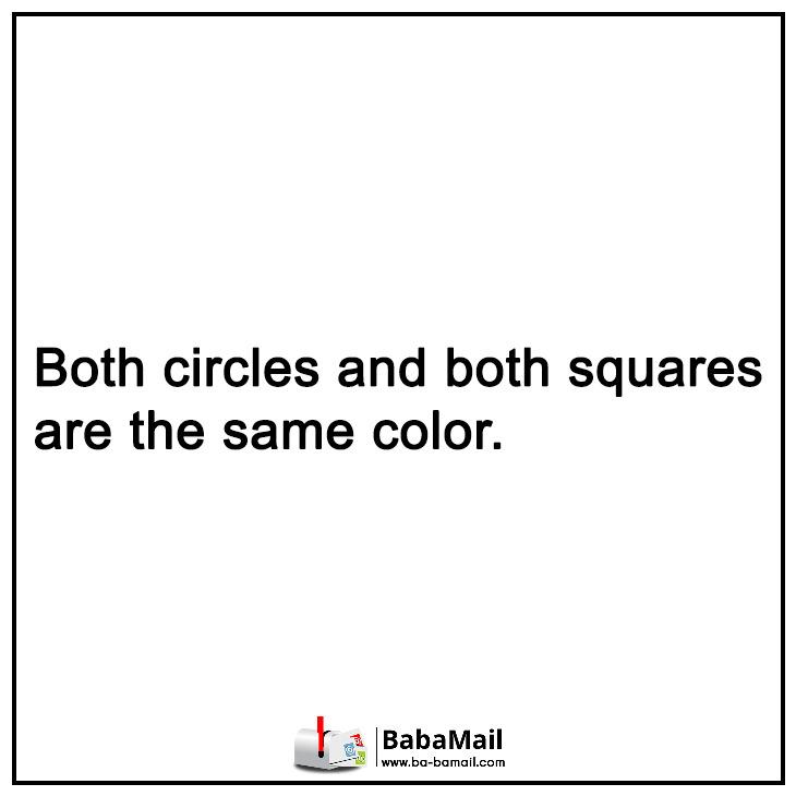 optical-illusions-switchbox