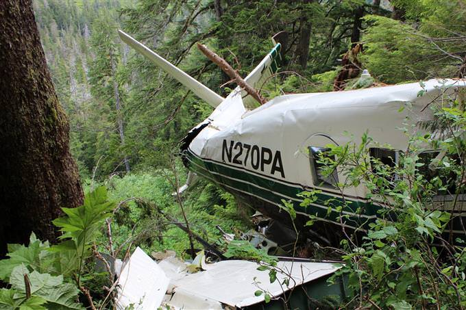 A plane crash in the jungle